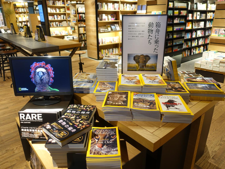 蔦屋書店 六本松 tsutaya