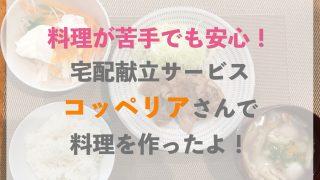 コッペリア 福岡 体験談
